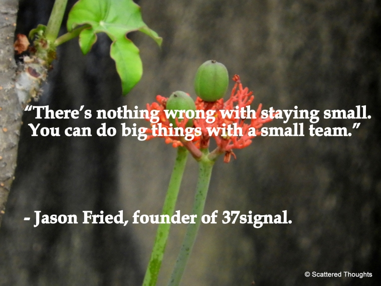 there is nothing wrong with staying small